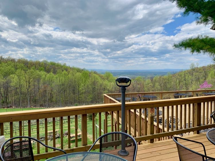 Enjoy a gorgeous view with your wine at Twins Oaks Tavern Winery
