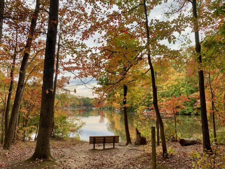 Fall foliage surrounds the bench at Lake Audubon in Reston Virginia