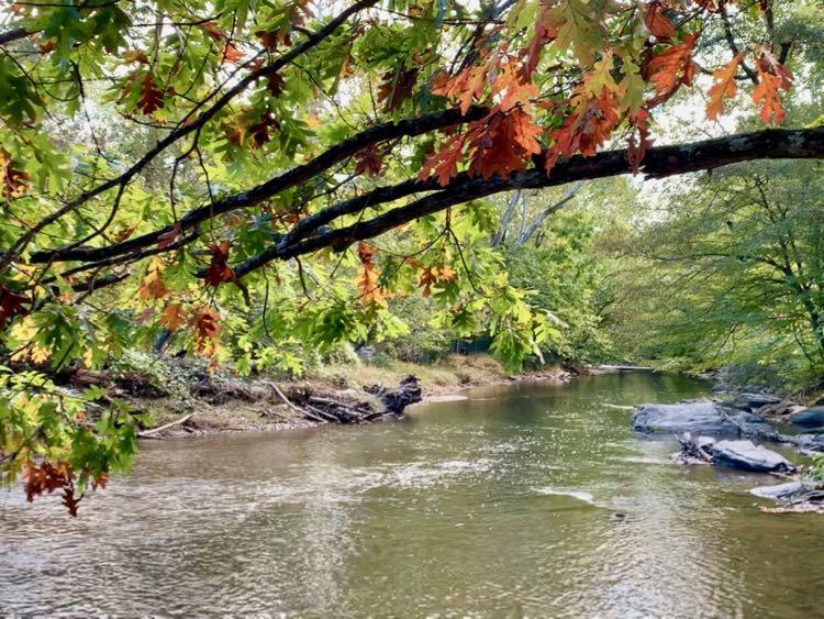 Enjoy pretty fall views and interesting Potomac River history at Seneca Park in Northern Virginia.