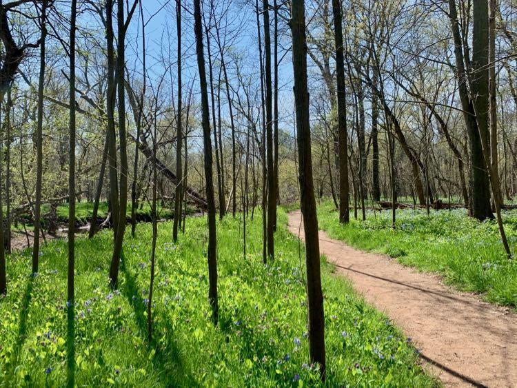 Spring hike Northern BROT