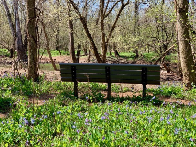 Bluebell Trail bench near Cub Run