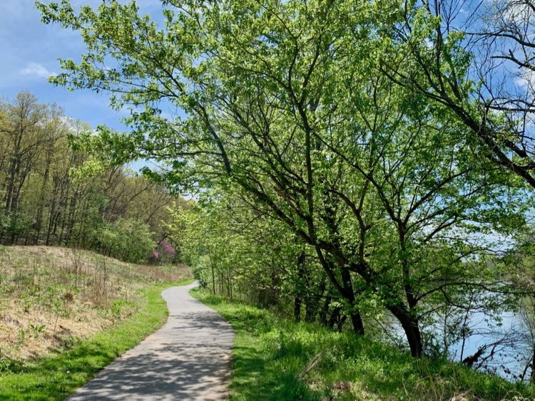 Path next to the Shenandoah River in Bluemont VA