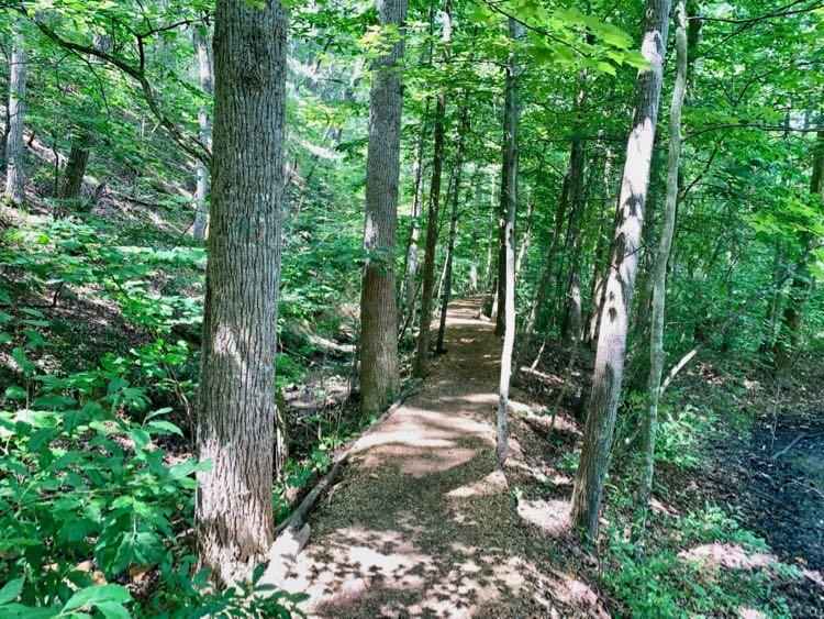 Arboretum Trail at Massanutten Resort